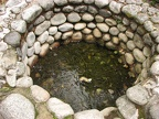 This is a soda spring becuase carbon dioxide and other gasses constantly bubble up through the water.