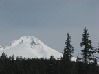 Mt. Hood as viewed from the parking lot for Trillum Lake Sno-Park