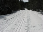 In winter the Forest Service road becomes a groomed trail through the forest around Trillium Lake. Remember not to walk or snowshoe on top of the cross-country ski tracks because it makes it harder for the skiers to use the trail.