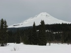 Mt. Hood as seen from Summit Prairie Meadows along the Trillium Lake Trail.