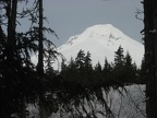 Mt. Hood as seen from the south end of the parking lot near the trailhead for the Trillium Lake Trail.